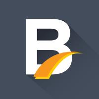 Bridg-it icon