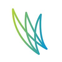 WordFlight icon
